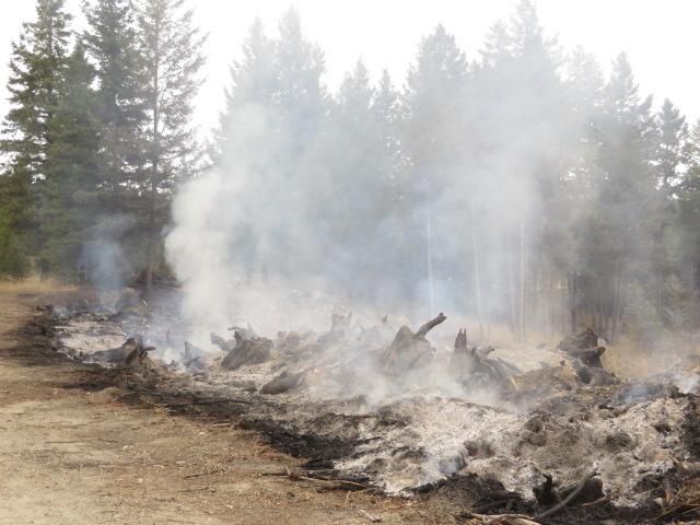 Caribou Pit Fire 2