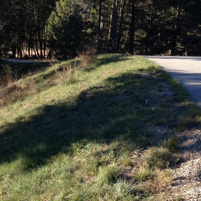 2014 mowing roadways, grass greens up