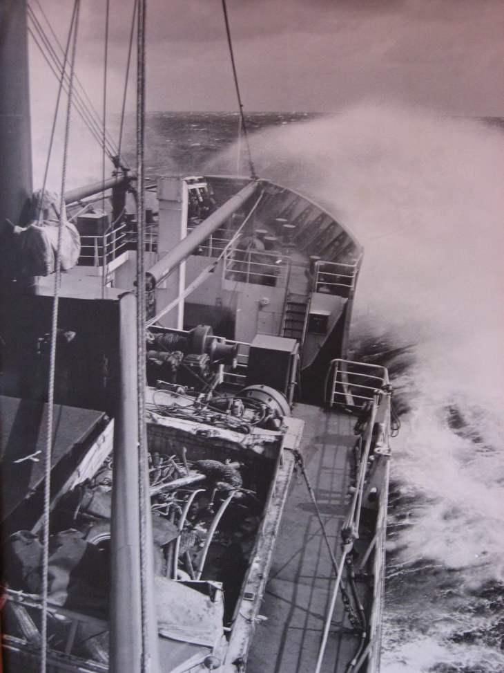 Nella Dan voyage south through the southern ocean.
