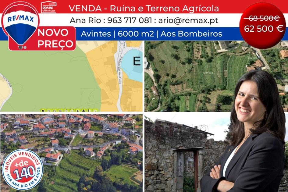 NOVO PREÇO - Ruína e Terreno Agrícola