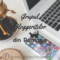 grupul-bloggeritelor-din-romania