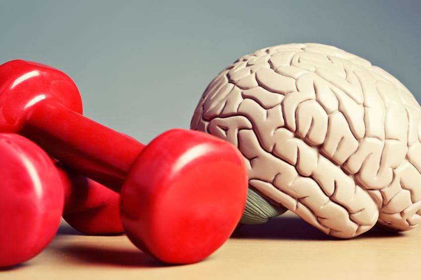 Jenis Senaman Terbaik Untuk Otak