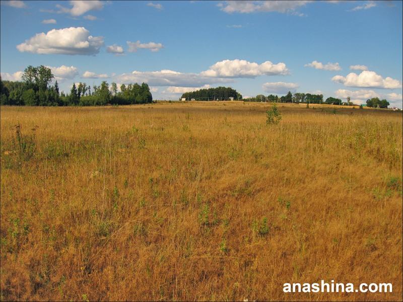 Село Морозово, август в Подмосковье
