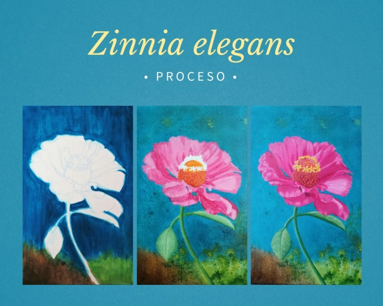 proceso de como se pintó mi pintura de Zinnia elegans