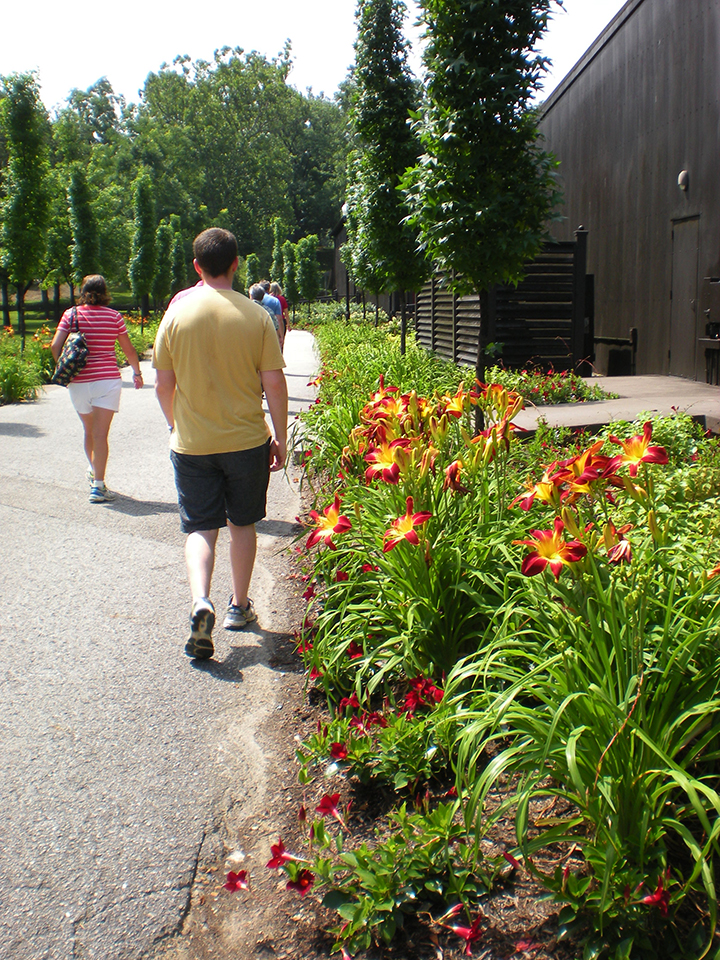 kentucky bourbon trail makers mark flowers