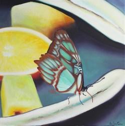 """Mariposa en fruta"", acrylic on canvas, 50 x 50 cm"