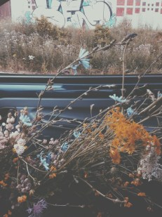 summer flowers in a car