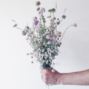 wild floral arrangement with silene, field scabiosa