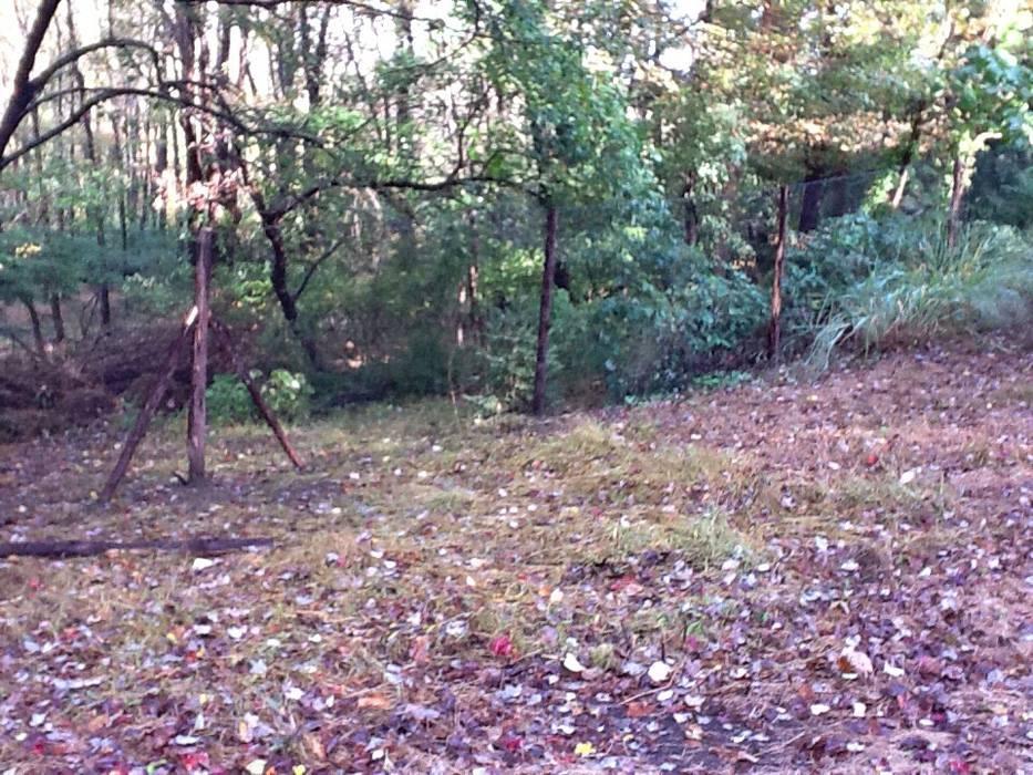 Deer Fences 1