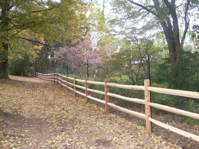 Deer Fences 5