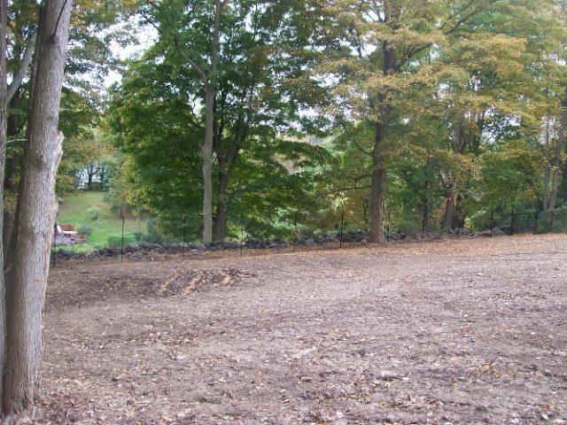 Deer Fences 6
