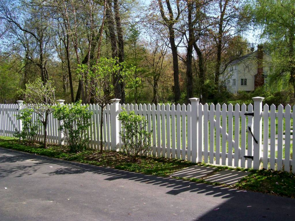 Picket Fences 18