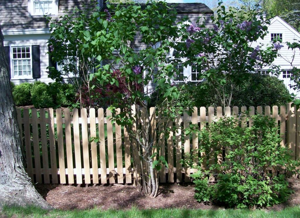 Picket Fences 19