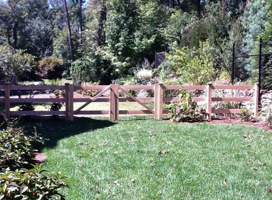 Pool Fences 4