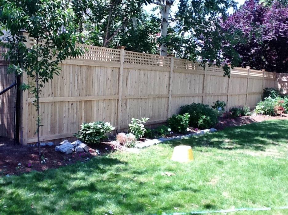 Tongue and Groove Fences 10
