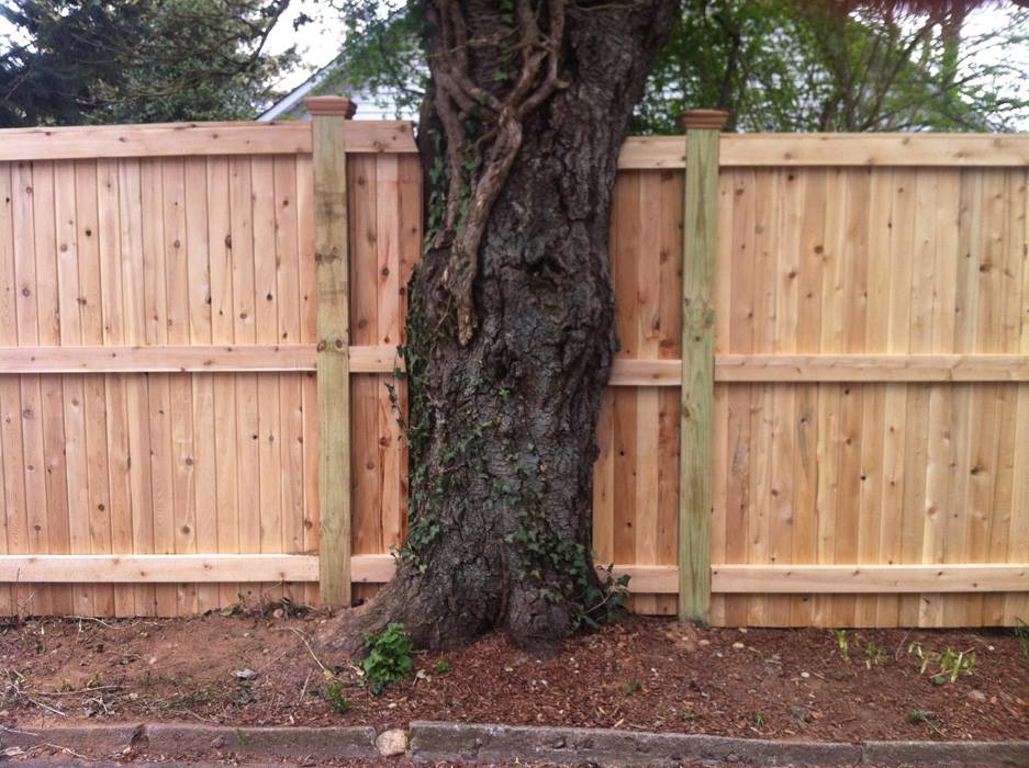 Tongue and Groove Fences 19