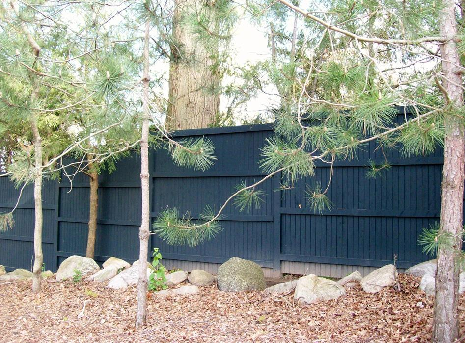 Tongue and Groove Fences 4