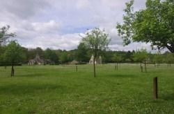 abbaye-de-vauclair12