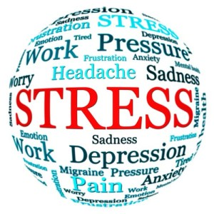 Understanding and managing Stress Online Course, anatomy and physiology online courses