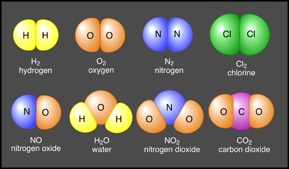 Molecules And Compounds  Anatomy & Physiology