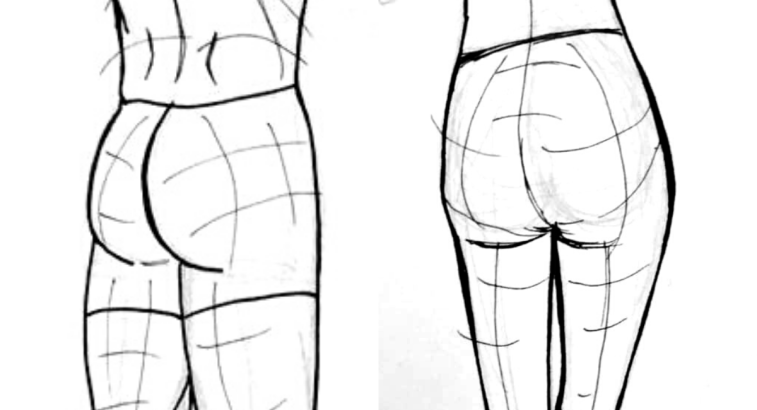 How to Draw Butts, How to Draw Glutes