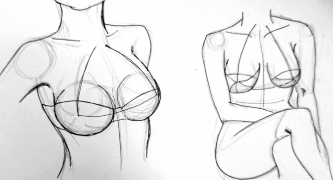 Breasts in bra or without bra