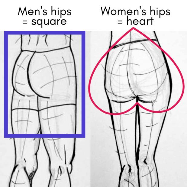 Men's hips and women's hips