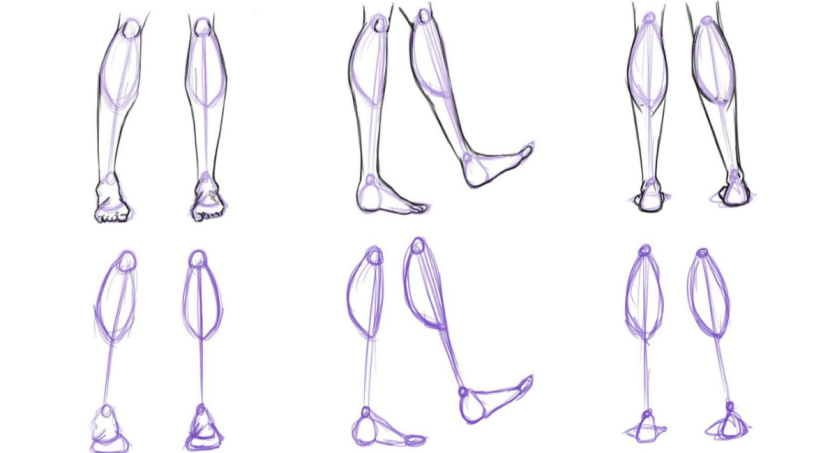 How to draw legs from the calves down