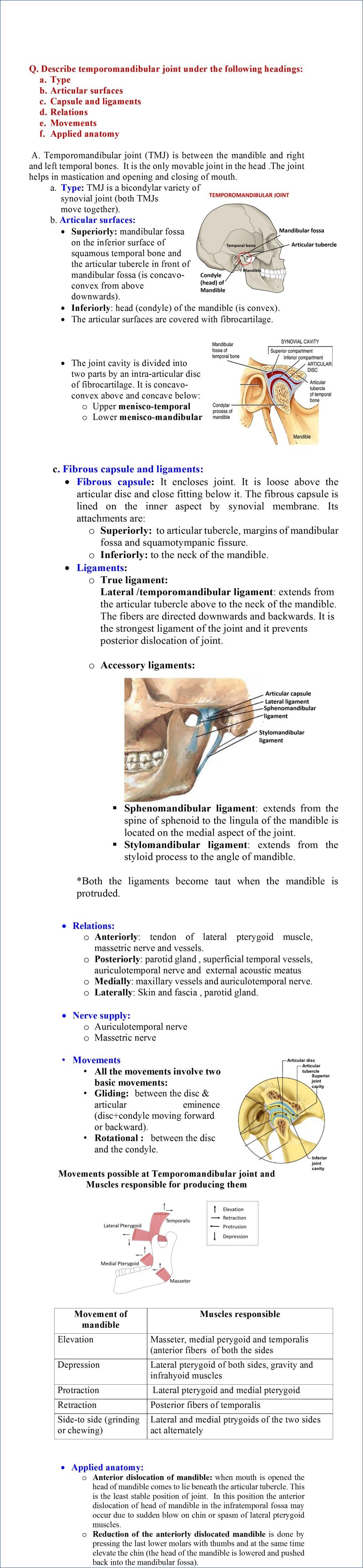 Temporomandibular joint -anatomy