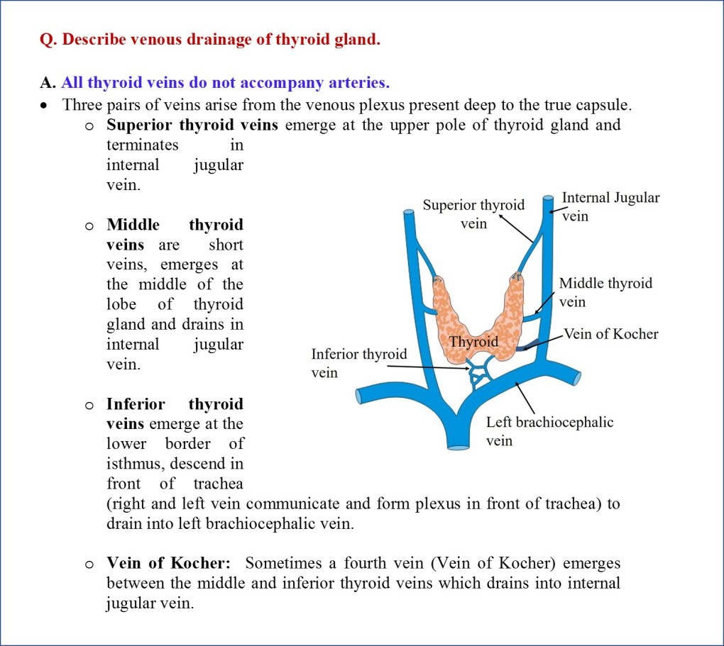 Venous drainage of thyroid gland