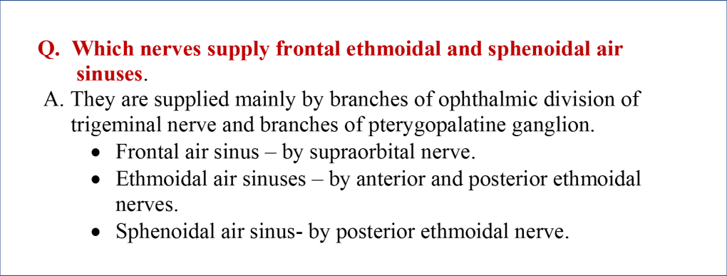 nerve supply of paranasal air sinuses