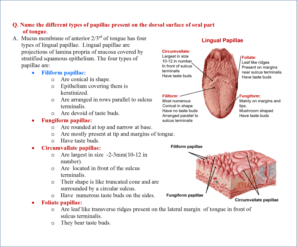 Types of Lingual papillae