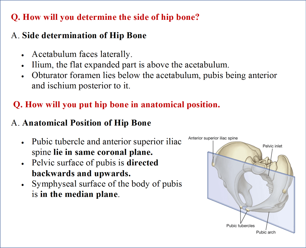 Side determination and anatomical position of hip bone