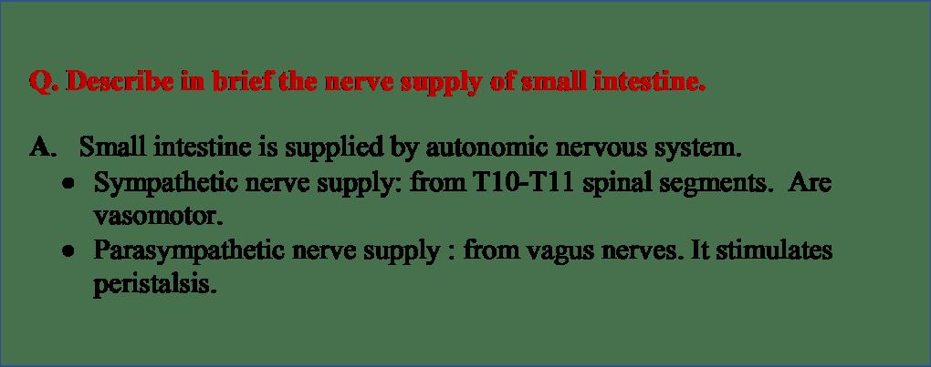 Nerve Supply of jejunum and Ileum