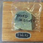 """Baked """"in-store"""" bread after three weeks in a plastic bag. Part of the Great Bread Experiment."""
