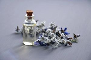 5 Benefits of using Lavender Oil, Lavender Essential oil