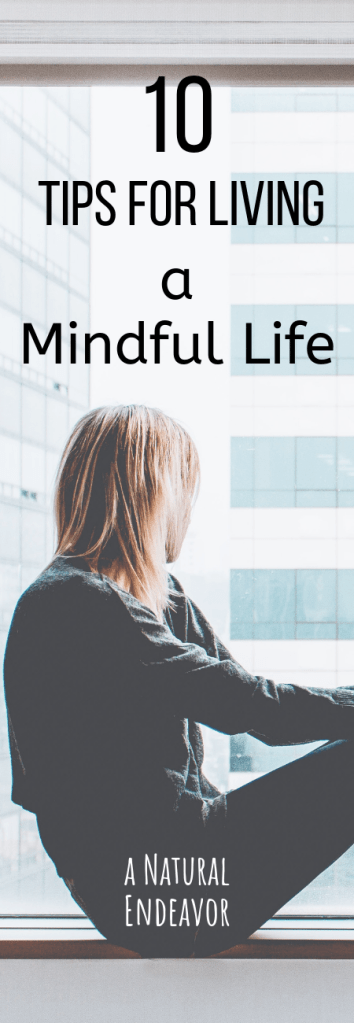 Living a Mindful Life, Mindful living in 10 steps