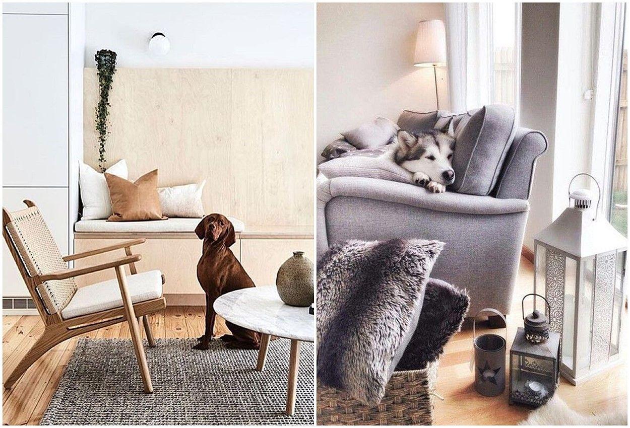 Sofás para toda la familia, aspectos a tener en cuenta antes de escoger el mobiliario ideal para tu hogar @Utrillanais