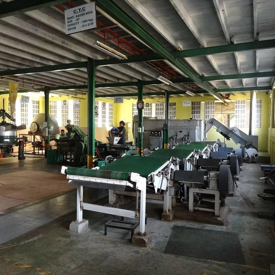 Anbassa-artisan-torrefacteur-different-type-de-the-Glenloch-tea-factory (2)-min