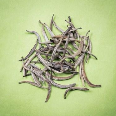 Anbassa-artisan-torrefacteur-the-blanc-Yin-Zhen-min