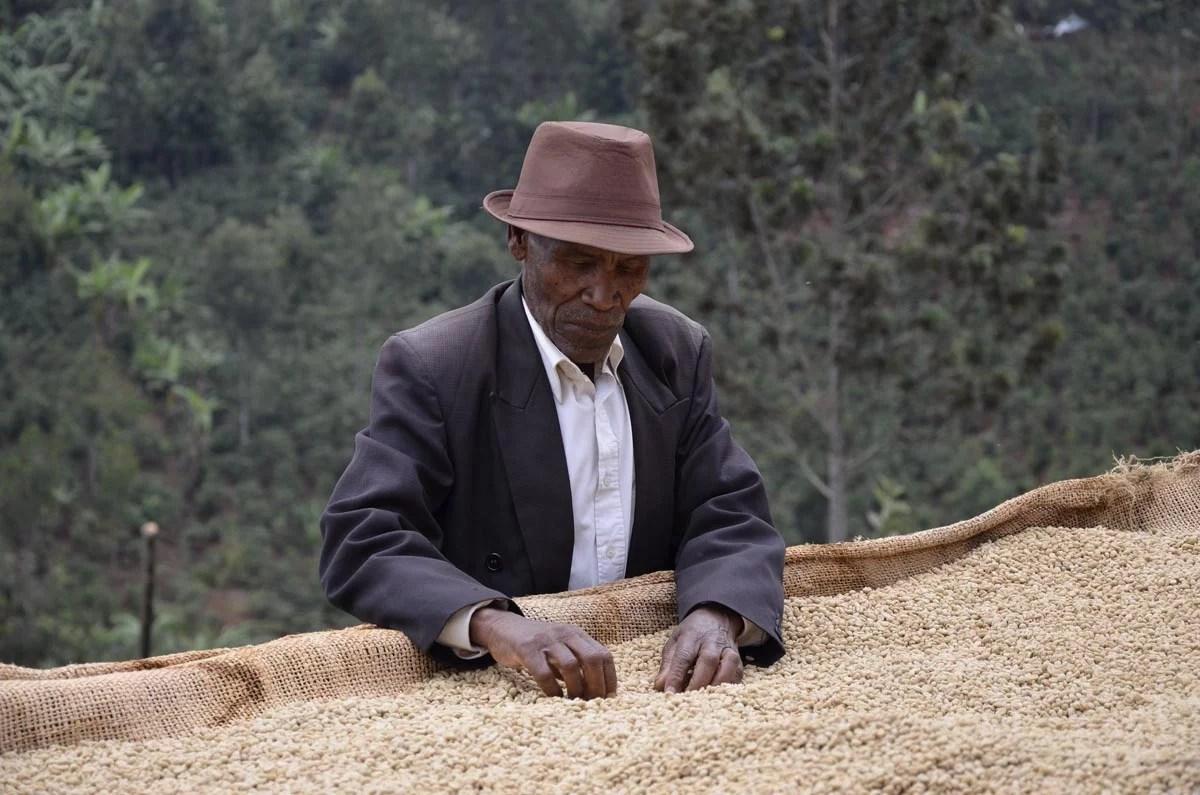 Anbassa Artisan Torrefacteur Kenya Kiambu1