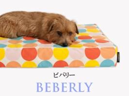 Banner-slide_beverly-RB