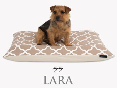 Banner-slide_lara-PB-mocha