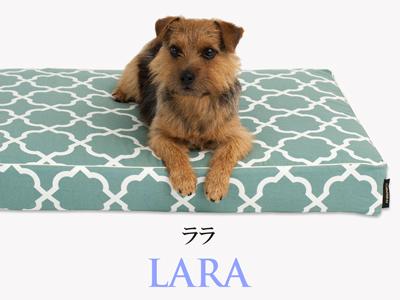 Banner-slide_lara-RB-mint