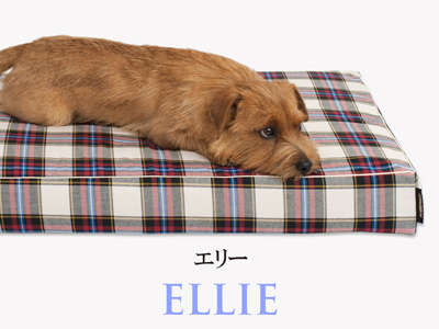 Banner-slide_ellie