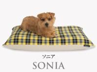 Banner-slide_sonia-PB