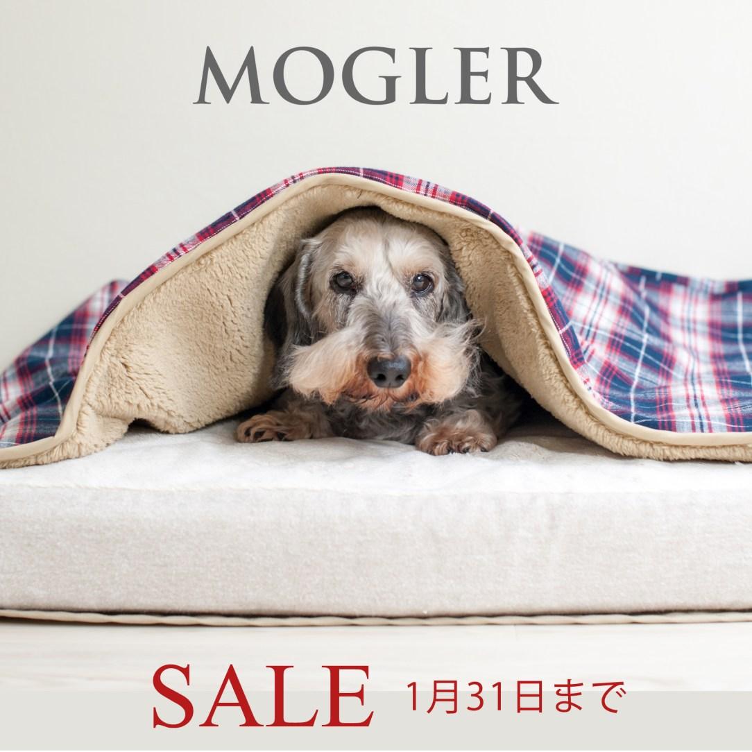 sale-mogler