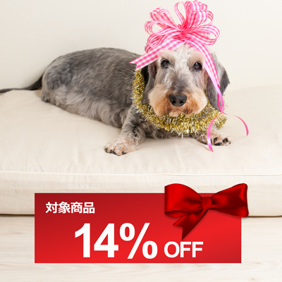 SQ-coupon-OL-14%