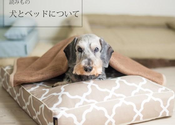 犬のベッド