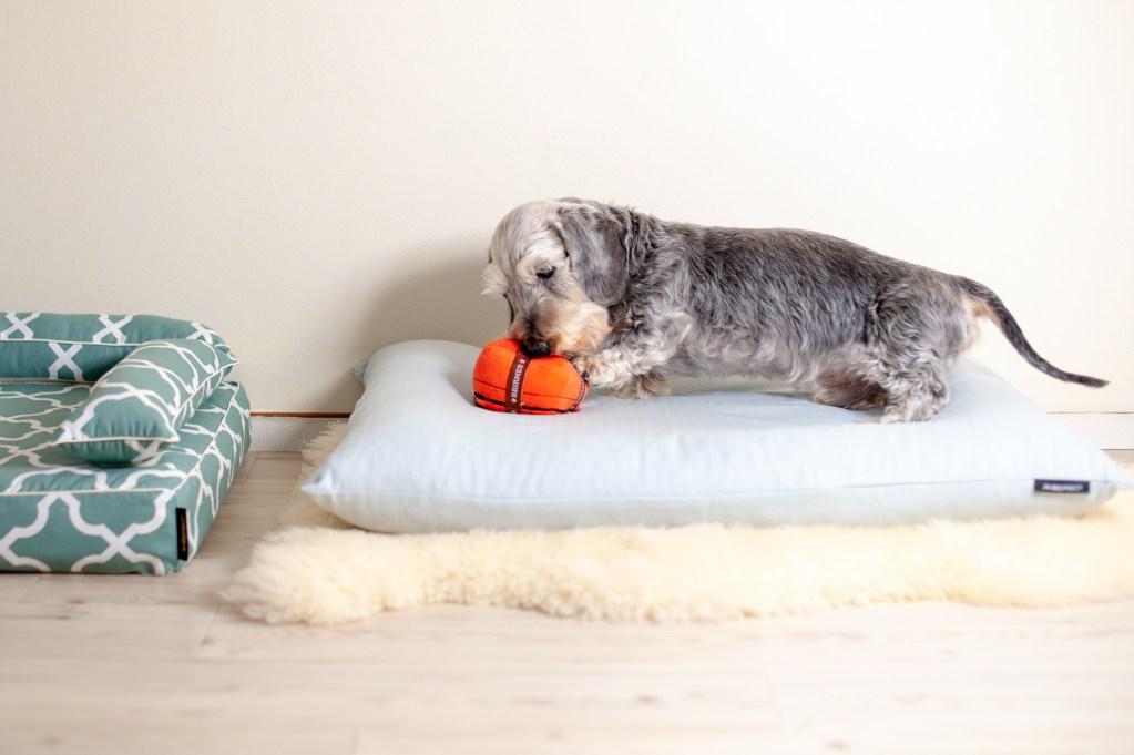 犬のベッド アンベルソ公式ブログ